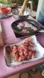 begonie biologiche RAVERABIO in tempura